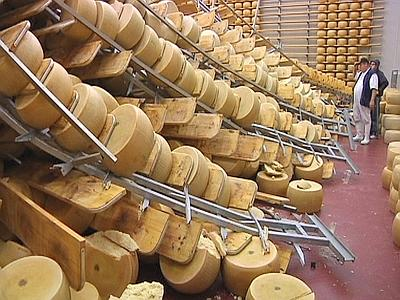 Solidarietà per il terremoto: acquisto parmigiano reggiano