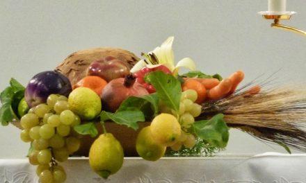 """""""Il suolo, bene comune"""": 65ª Giornata Nazionale del Ringraziamento"""