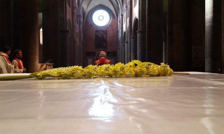 GMG diocesana e consegna delle palme