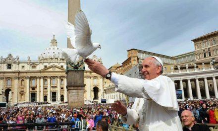 """""""La nonviolenza: stile di una politica per la pace"""": 50° Giornata mondiale per la pace"""