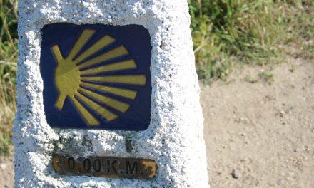 Vamos! In Cammino verso Santiago