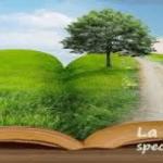 Bibliodramma: corso ad Albareto