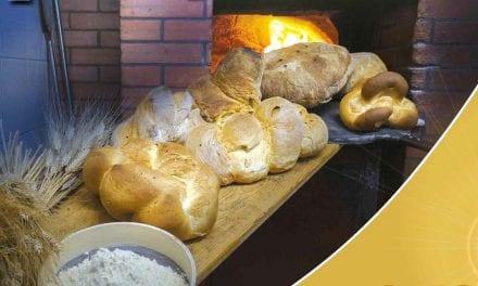 """""""Dalla terra e dal lavoro: pane per la vita"""": Giornata nazionale del Ringraziamento"""